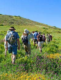 All About Joining A Rambling Group