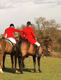 Arguments For Hunting Fox Hunting Pro