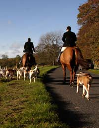 Fox Hunting Hunt Monitor Saboteur